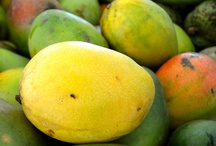Recetas / ¿Quieres saborear algo diferente hoy y cocinar junto a tu familia y amistades? Visita la sección de Recetas de Mi Puerto Rico Verde: http://www.miprv.com/category/recetas/ / by MiPuertoRicoVerde.com