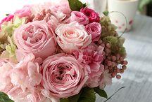 Preserved flower Pink