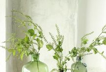 Pantone Color of the Year- Greenery