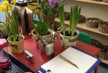 EYFS plants topic