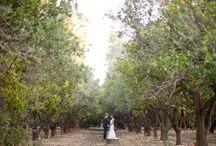 2012 bride wedding venues