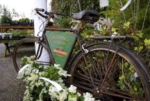 Bicycles at the Nursery
