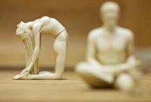 йога, фитнес, упражнения