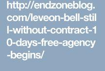 Endzoneblog.com