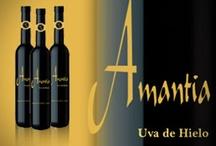 Vinos Valdesneros Arlanza / Vinos Bodegas Valdesneros Denominación de Origen Arlanza, Palencia, España