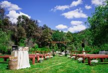 Wedding Venues / Wedding Venues around the world