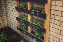Garden projects