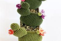 Piante grasse crochet