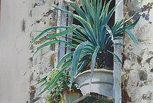 Festős - falak, kapuk, ablakok