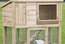 How to build a rabbit hutch / It's easy to build your own rabbit hutch. A good rabbit hutch provides shelter, is easy to clean and resists moisture.