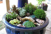 Green inspiration / Laissez entrer la nature chez vous. Des idées de plantes pour votre intérieur