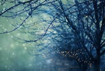 Zima/Święta