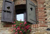 front, windows, flowerbox, okna, kwietniki