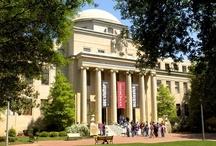 South Carolina - University of South Carolina / by Ron McCreary