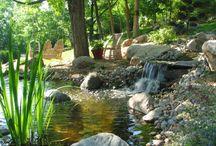 Water Garden, waterfall & Koi ponds