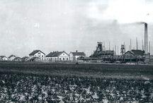 Humboldtka / Nýřany, Humboldtka, (1865 – 1920)