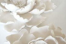The Color | WHITE / WHITE is chic.  WHITE is clean.   WHITE is more than basic.