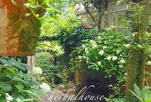 ガーデン&ハウス