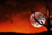 Moon, Moon, Bright & Shinny Moon / by Regina Beane Feagin