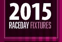 Fontwell Park Racecourse Fixtures 2015 / Located between the Sussex towns of Chichester and Arundel in picturesque surroundings, Fontwell Park hosts 24 exciting jump race meetings throughout the year offering first class Hospitality facilities with panoramic views of the only figure of eight jumps course in the country.