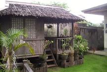Philippine native houses