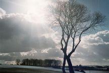 Landscape - Atelier Liene / Landscape photography Landschaftsfotografie