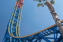 Six Flags: Magic Mountain