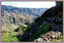 RUTAS DE SENDERISMO TENERIFE / rutas de mi blog.
