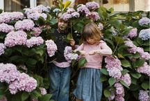 Garden/Outdoor Spaces / by Alli Smith anallievent.com