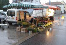 Wochenmarkt 28.08.2015 / Jetzt ist wieder Wochenmarkt in Edigheim!  An unserem Blumenstand erhalten sie frische Rosen von heimischen Züchtern und Sonnenblumen aus regionalen Gärtnereien. Gladiolen und Chrysanthemen in bunten Farben und ebenfalls aus regionalen Gartenbaufachbetrieben stammend runden unser Angebot an diesem Markttag ab.  Schauen Sie doch mal vorbei auf dem Edigheimer Wochenmarkt! Wir freuen uns über Ihren Besuch!