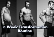 Workout Programs / Workout Programs from Bodybuildingarena.com