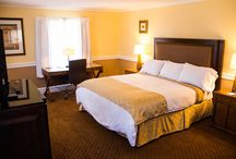 Guest Rooms / Our guest rooms are beautifully decorated and include every amenity for your stay.