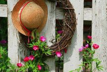 Gardening Thyme / by Mel Toms