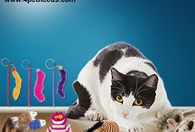 Buy Online cat Toys in India-4PetNeeds