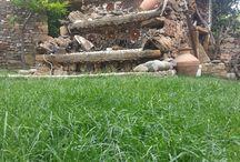 Gokceada Uysallar Köy Evi / gökçeadanın taşından ahşabından yapılmış taş evler. tatil,macera,gezi,romantik anlar,doğa harikası gökçeadayı keşfederken  gökçeada uysallar köy evinde kendi evinizin rahatlığında kalabilirsiniz