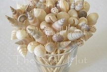 sea shells craft