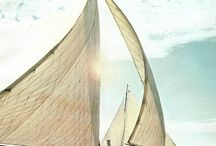 All things sailing!  / by Tricia Barbarick-Steffes