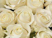 Wedding Flowers 6.25.16