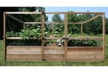Raised Vegtable Garden / by Barbara Schiavone