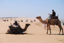 Lugares turísticos de Marruecos