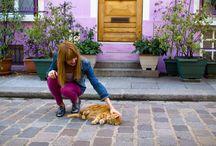 Isadorable Purple Paris