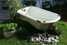 Small pond / Small pond ideas for my goldfish/small natives