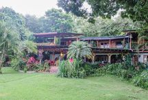 Montezuma, Costa Rica /  Montezuma is the quintessential bohemian beach town in Costa Rica. Click any pin for a local travel guide to plan your trip to Costa Rica.
