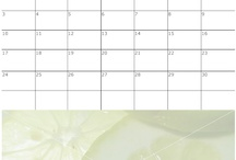 Calendars / SmartDraw is great for making customized calendars you can print out. Add your own photos and images. Learn more about SmartDraw's calendar software https://www.smartdraw.com/calendar/calendar-software.htm?id=358478