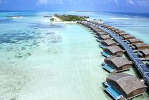 Club Med Finolhu Villas, Maldives / by Club Med