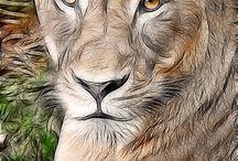 ζωγραφιές ζώων