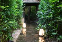 Serene Landscaping / Can't you just HEAR all the silence?!! LOVE IT!!!!!!!! Just fabulous - can't wait to copy all these ideas in my own house! LOL!!!