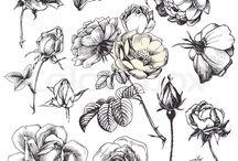 nice lil flowers