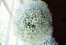 fehér virággömb