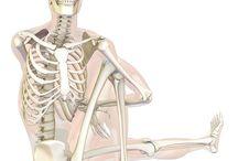 yoga in pathology
